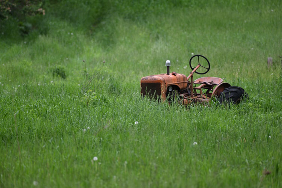 How to Start a Lawn Care Business That Grows Steadily