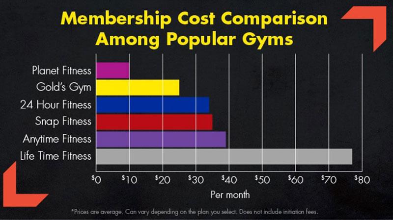 Gym Membership Statistics on Expenses