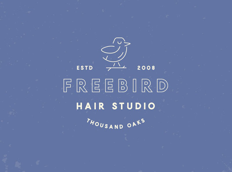 Freebird Hair Studio Branding