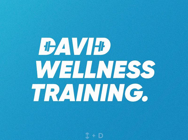 David Wellness Training